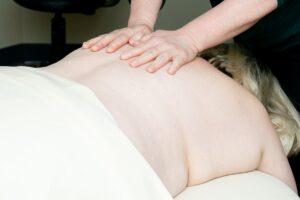 Madelia Health Massage Service